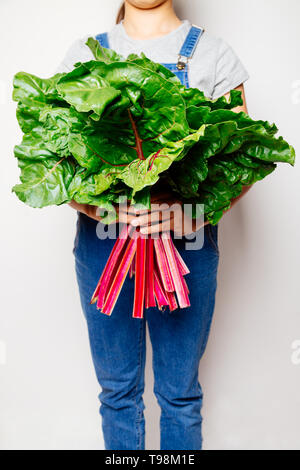 Mid section of a girl in denim overalls holding a bunch of fresh swiss chard. Focus on the leaves - Stock Image