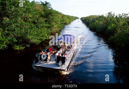 Everglades Florida National Park Flamingo Buttonwood Canal tour boat view from Main Park Road Bridge - Stock Image