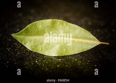 Bay leaves on a black marble desk closely - Stock Image