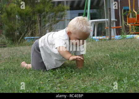 Side view little baby boy crawling in back garden in summer - Stock Image