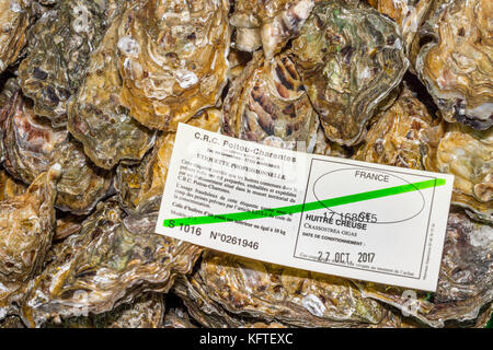 Certificate of quality and freshness for oysters - France. - Stock Image