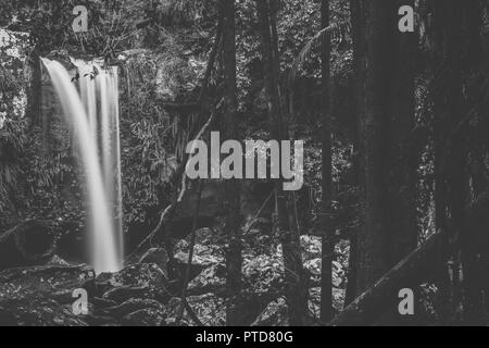 Curtis Falls located in Mount Tamborine during the day. - Stock Image