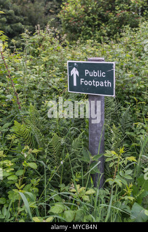 Public footpath sign - the actual footpath overgrown with grass and weeds. Stay on the right path parody. - Stock Image