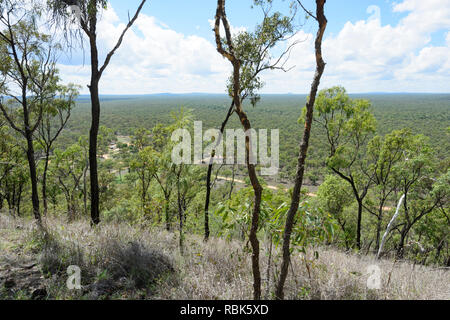 View from the top of Kalkani Crater on the Circuit Track or Rim Walk, Kalkani Crater, Undara Volcanic National Park, Queensland, QLD, Australia - Stock Image