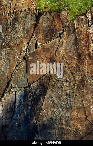 Prehistoric cup and ring mark carved stone rock art outcrop at Achnabreck, Kilmartin Valley, Argyll, west Scotland, - Stock Image