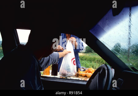 Male car driver being handed a bag of fruit at a roadside fruit & vegetable stand, Croatia - Stock Image