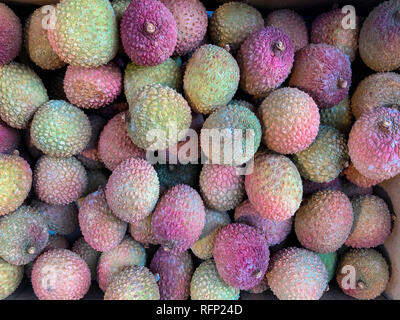 Lychee - a tropical tree native to the Guangdong and Fujian provinces of China. - Stock Image