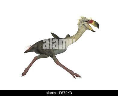 Dinosaurier Phorusrhacos / dinosaur Phorusrhacos - Stock Image