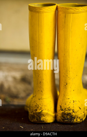 View of yellow rainboots with fresh dirt - Stock Image