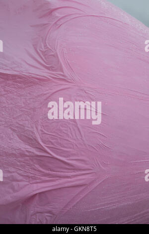 Abstract pink plastic  KATHY DEWITT - Stock Image
