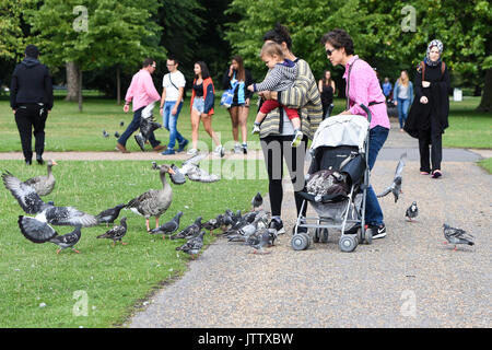 London, UK. 10th August, 2017. A family enjoys the wildlife in Kensington Gardens in London, UK this morning. Credit: BSFUK/Alamy Live News. - Stock Image