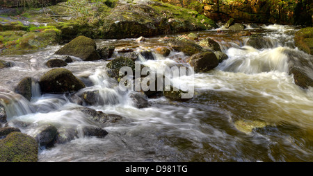 The spring rains of the River Aune (or Avon) here descend through the gorge above Shipley Bridge in Dartmoor National - Stock Image
