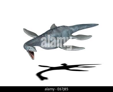 Dinosaurier Elasmosaurus / dinosaur Elasmosaurus - Stock Image