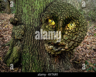 Evil magical forest tree - Stock Image