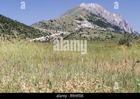 Zagoria valley Albania - Stock Image