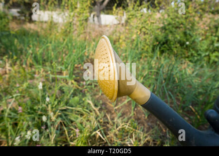 Detail of plastic watering can, in garden. - Stock Image