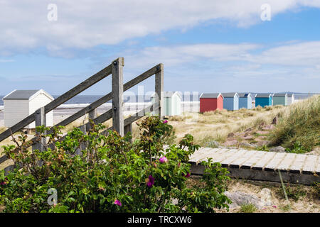 Wooden stepson path leading to beach on Moray Firth coast. Findhorn, Moray, Scotland, UK, Britain - Stock Image