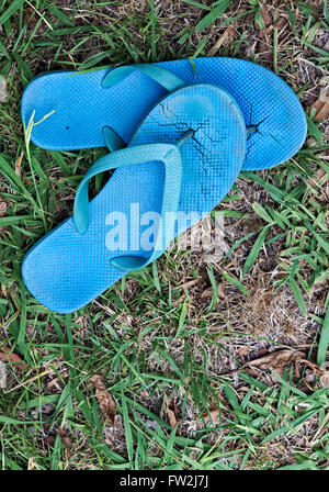 A pair of worn out blue thongs/flip flops against worn down lawn grass. - Stock Image