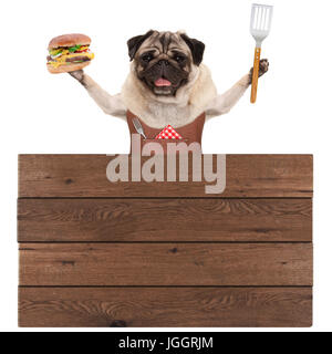happy pug dog wearing leather barbecue apron, holding hamburger and spatula, with wooden board sign, isolated on - Stock Image