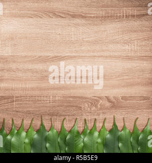 Ficus leaves on the brown wooden texture background - Stock Image
