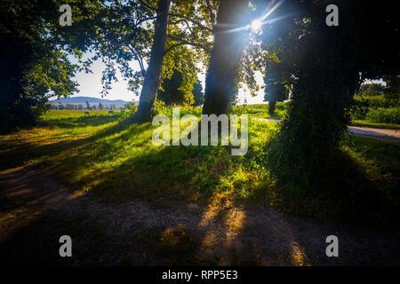 Morning sunburst in nature Dalmatia Croatia - Stock Image