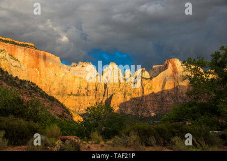 USA, Utah, Zion National Park, Early morning sunlight shining on the towering cliffs - Stock Image