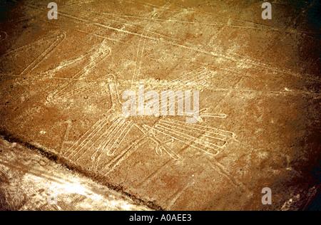 Nasca Lines, Snake Headed Bird, Peru - Stock Image