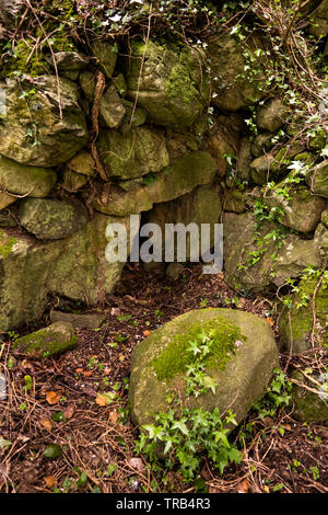Ireland, Co Louth, Cooley Peninsula, Broughhattin, Doolargy, stone built Sweat House, low  entrance on stone wall in lower slope of Carrabane - Stock Image
