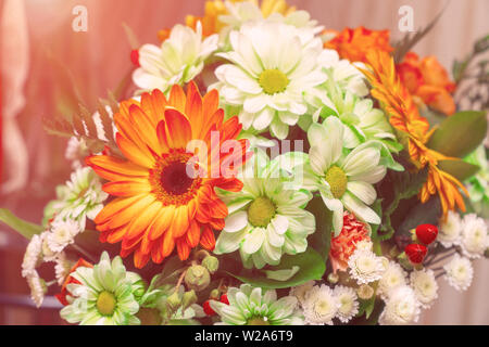 Bouquet of white and orange gerberas - Stock Image