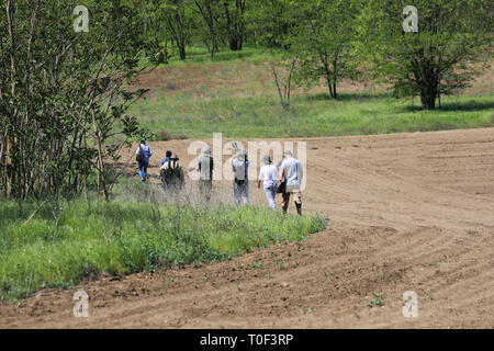 Tulcea / Romania - May 05, 2018: Group of unidentifiable photographers and birdwatchers looking for birds. Wildlife photography - Stock Image