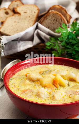 Vegetable soup with ingredients carrot, cauliflower, potato and parsley in red bowl - Stock Image