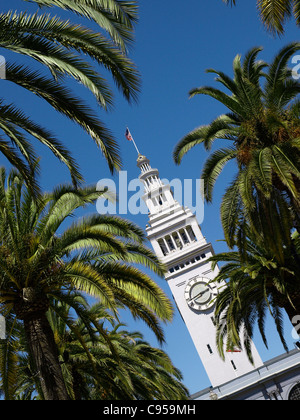 San Francisco Ferry Terminal Plaza Clock Tower and Palm trees - Stock Image