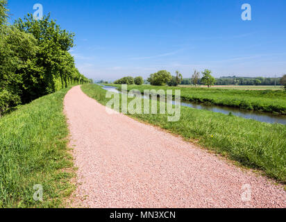 Cycle path along river Dreisam, meadows at the river, Freiburg, Breisgau, Baden-Würtemberg, Germany - Stock Image