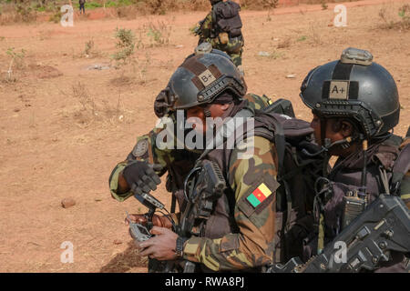 Members of Cameroon's elite Rapid Intervention Battalion (BIR)  look at imagery from a drone as they prepare to conduct a mock counter-terrorist raid  - Stock Image