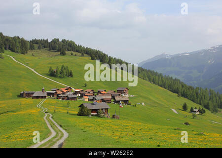 Old village Obermutten and green meadow with yellow flowers, Switzerland. - Stock Image