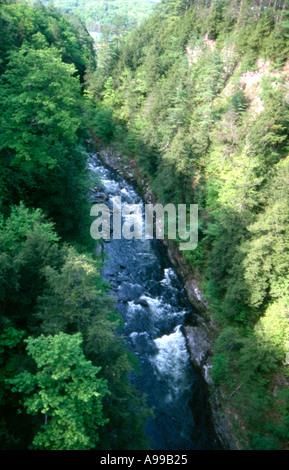 stream valley - Stock Image