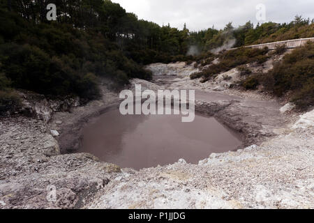 Close-up of one of 'The Devils Ink Pots, in the Wai-O-Tapu Thermal Wonderland, North Island, New Zealand - Stock Image
