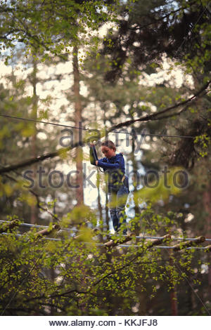 woodland high ropes - Stock Image