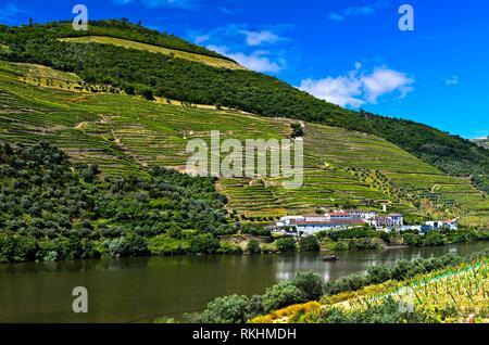 Winery Quinta das Carvalhas on the Douro River, Alto Douro Region, Pinhao, Douro Valley, Portugal - Stock Image