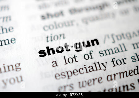 Shotgun - Stock Image