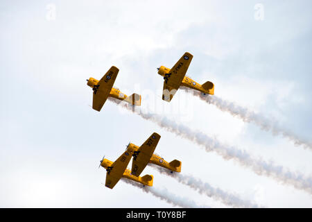 "The Canadian Harvard Aerobatic Team, which flies the North American Aviation T-6 Texan (a World War Two era trainer known as a ""Harvard"" in Canada) as - Stock Image"