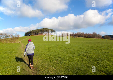 Woman person walking in the Cheshire countryside wearing a hat and outdoor clothing walking towards the village of Harthill on Bickerton Hills - Stock Image