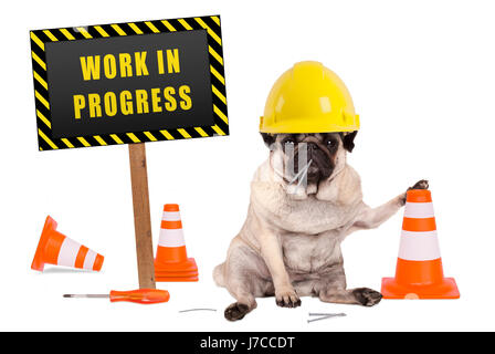 pug dog with constructor safety helmet and yellow and black work in progress sign on wooden pole, isolated on white - Stock Image