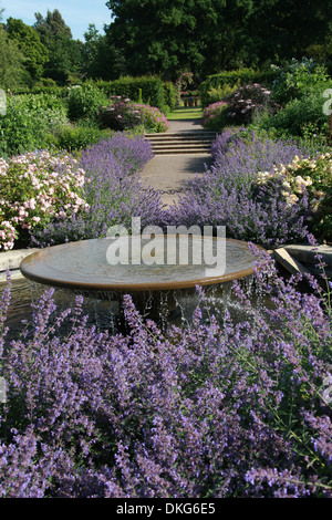 Water Fountain, Royal Horticultural Gardens Wisley, Woking, Surrey. - Stock Image