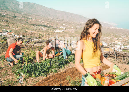 Friends working together in a farm house - Happy young people harvesting fresh vegetables in the garden house - Stock Image