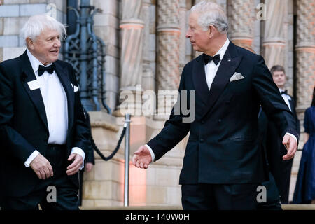 Sir David Attenborough and Charles, The Prince of Wales attends The global premiere of Netflix's OUR PLANET on Thursday 4 April 2019 at The Natural History Museum, London. . Picture by Julie Edwards. - Stock Image