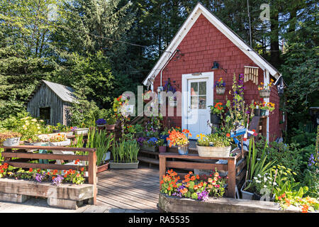 A tiny wooden house and garden along the boardwalk on Hammer Slough in Petersburg, Mitkof Island, Alaska. Petersburg settled by Norwegian immigrant Peter Buschmann is known as Little Norway due to the high percentage of people of Scandinavian origin. - Stock Image