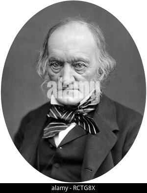 RICHARD OWEN (1804-1892) English biologist and paleontologist about 1870 - Stock Image