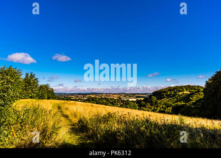 Early morning at Sharpenhoe outcrop, Bedfordshire, UK - Stock Image
