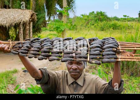 Smoked Fish, Ugandan man selling fish at the roadside, Street Vendor, Uganda, East Africa - Stock Image